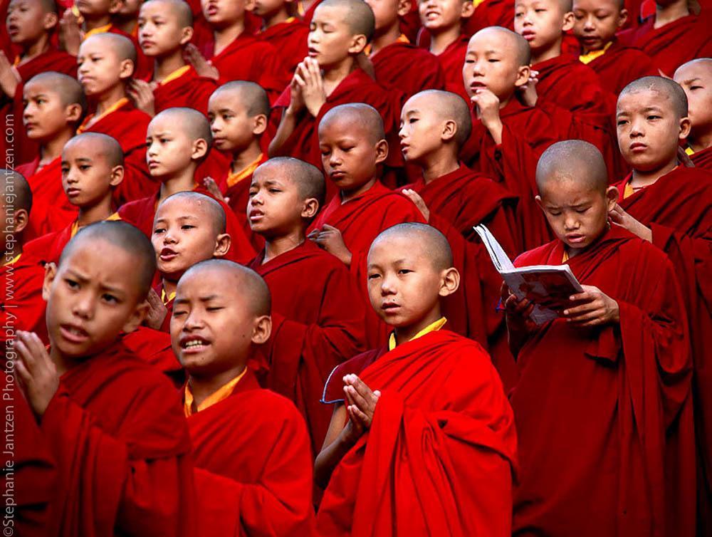 Buddha_site_stephanie_jantzen-4