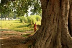 Inde-scenes_site_stephanie_jantzen-32