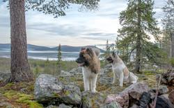 View to Äkäslompolo