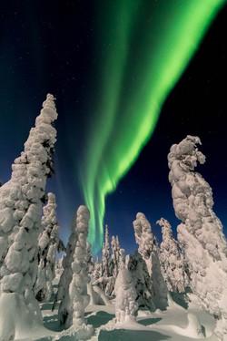 February Aurora Borealis