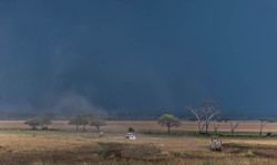 Serengeti Rain