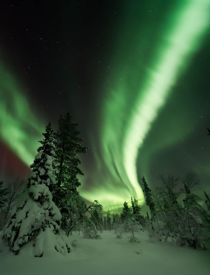 Aurora Borealis at Ylläs