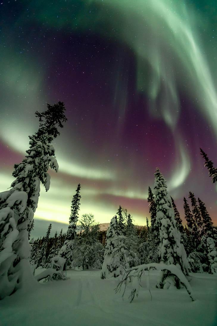 Aurora Borealis at Ylläs 2