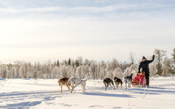 Husky Ranche at Kurtakko