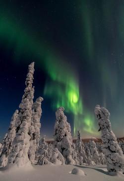 Northern Lights at Fell Kuertunturi