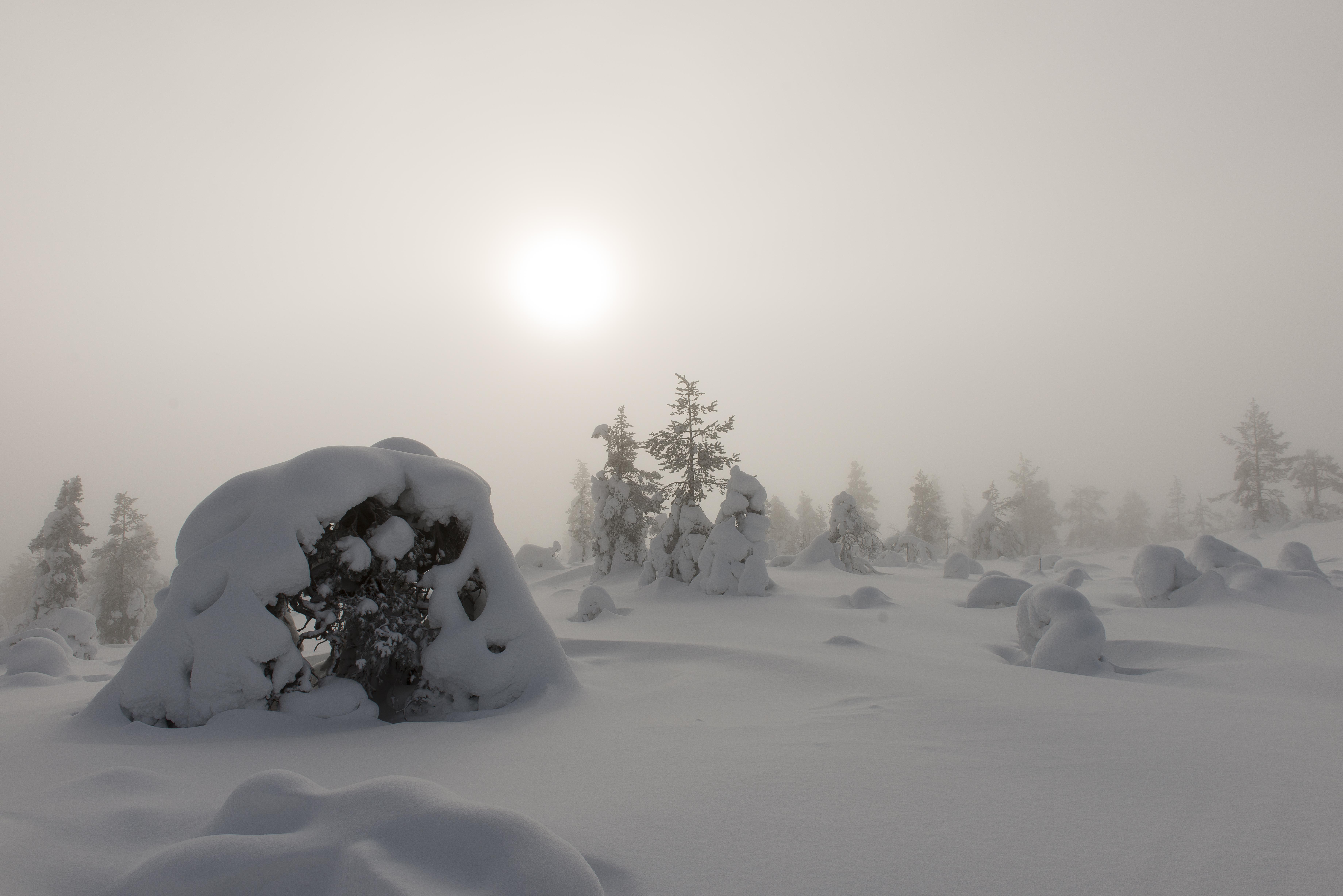Fog on the fell-8097.jpg