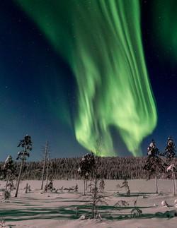 Aurora Borealis on road to Ylläs