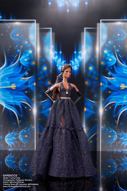 Preliminary Evening Gown_๒๐๑๒๒๒_11.jpg