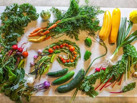 Want Fresh Vegetables