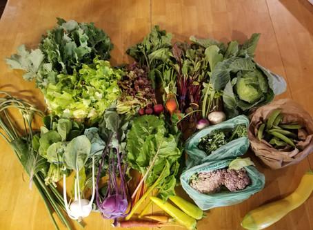 Tasty Vegetables - Week 5 CSA 7/7