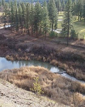 PW_Bluff_Beaver_Dam.jpg