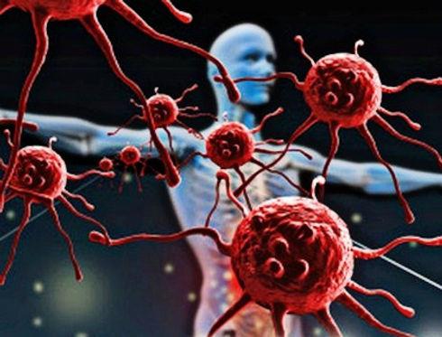 Sistema_Inmune.jpg