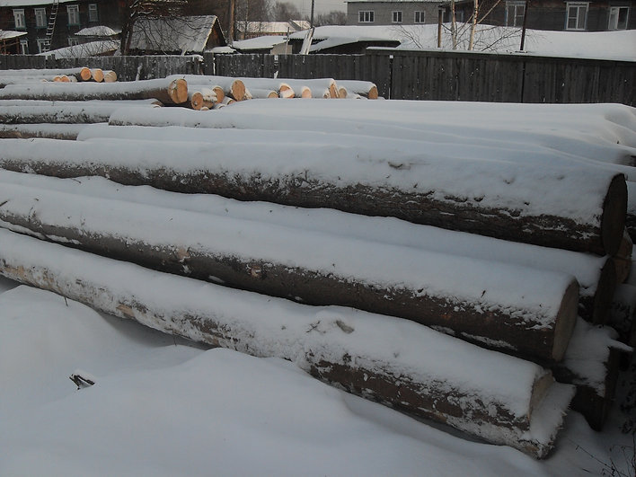 древесина сырье продукция