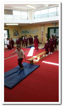 SI Gymnastics