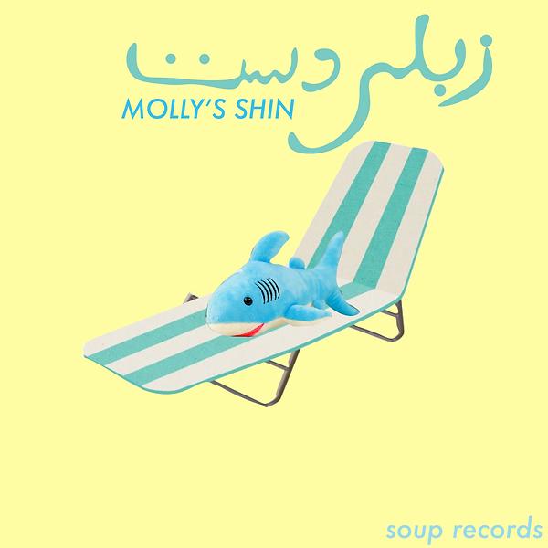 mollys-shin.png