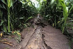 Ephemeral Erosion