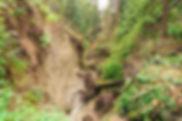 Ravine Erosion