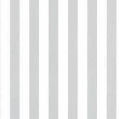 GM1 - Gris motif Rayures