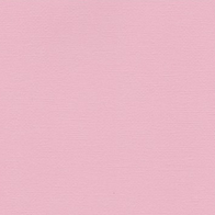 R3 - Rose Bébé