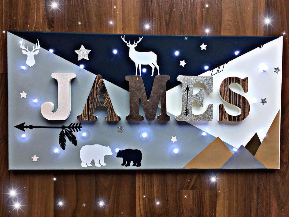Toile Lumineuse - James