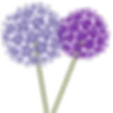 Purple-Ella-Favicon.png