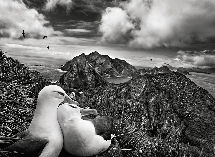 Fotografia preto e branco de Sebastiao Salgado