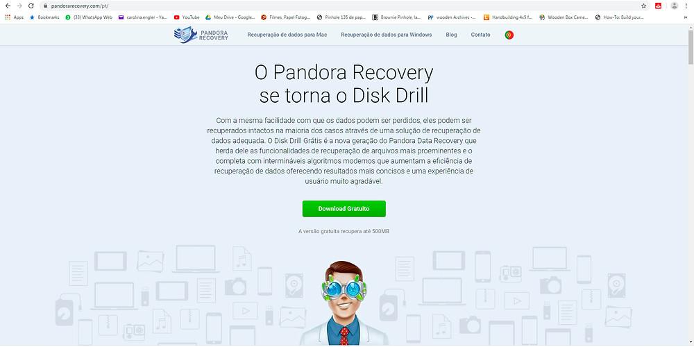 print da página de rosto do site do programa pandora recovery