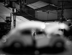 William Alves - foto 2