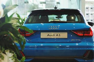 Audi A1 Rear Plant.jpg