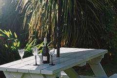Wine On Asteroid Bench.jpg