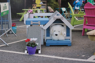 Blue Dog House With White Dog.jpg