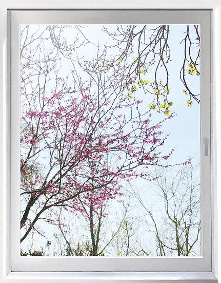 UW_Spring Fling - Portrait Orientation