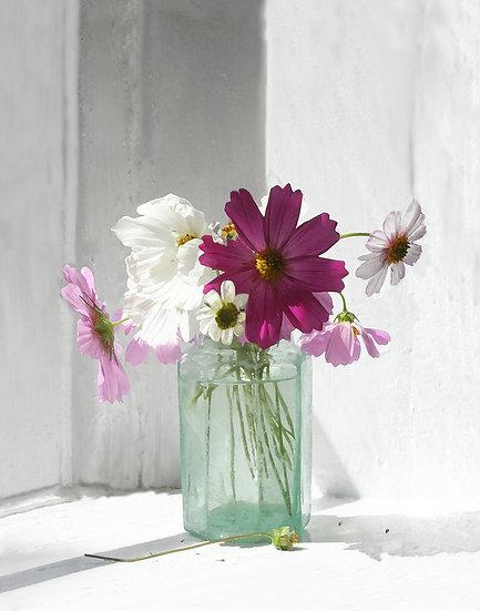 Summer Purples- Portrait Orientation