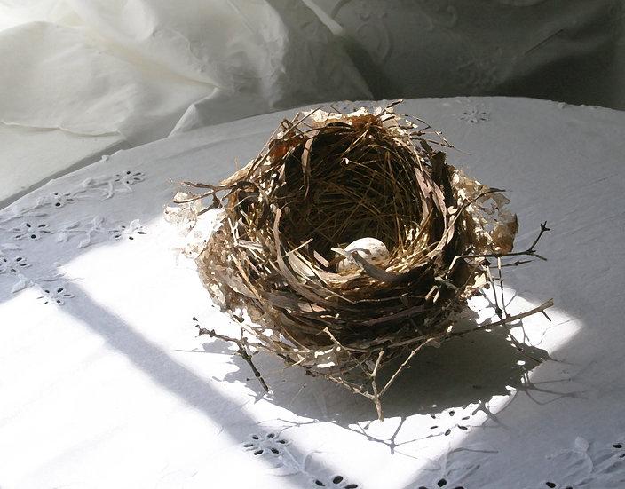 Nest of One- Landscape Orientation