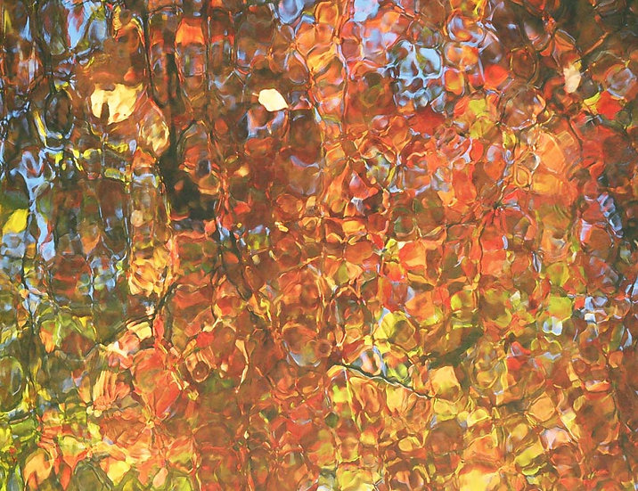Autumn's Abstract- Landscape Orientation
