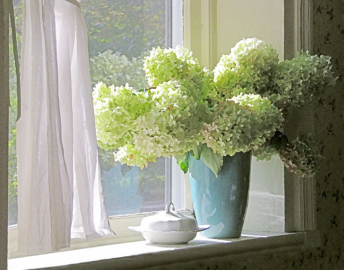 Hydrangea on the Windowsill - Landscape Orientation