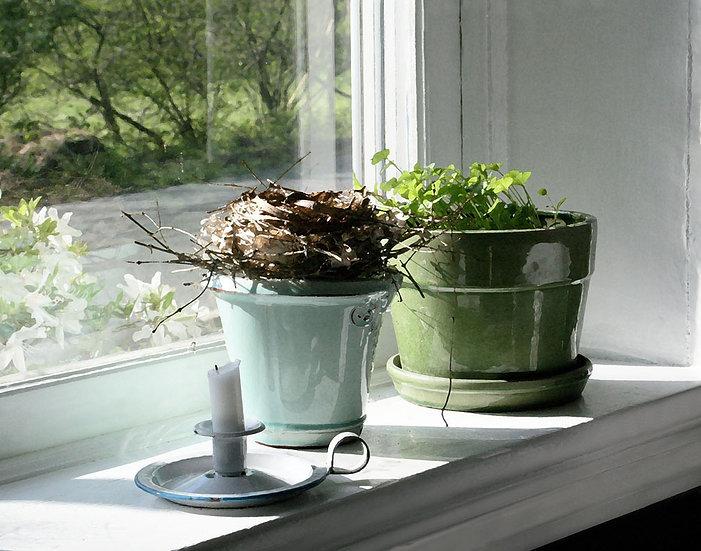 Spring Preview- Landscape Orientation