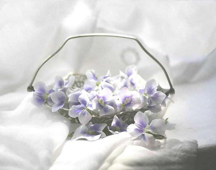 Wedding Violets- Landscape Orientation