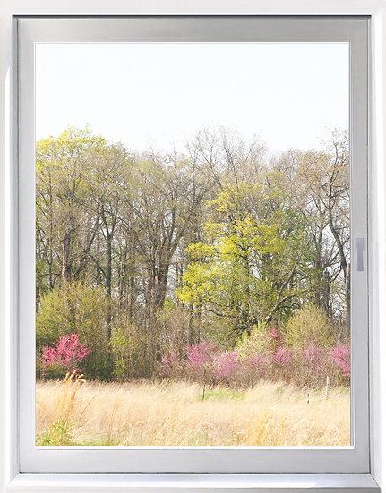 UW_Duke Gardens - Portrait Orientation