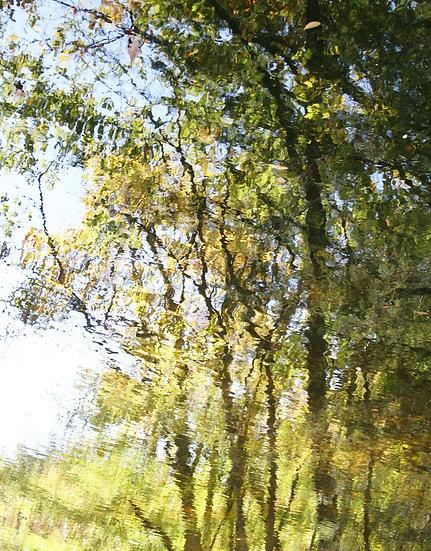 Late Spring's Reflection, Left- Portrait Orientation