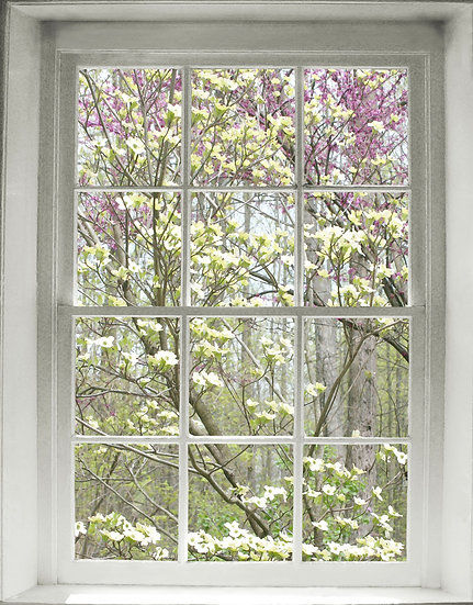 Spring Woods Window- Portrait Orientation