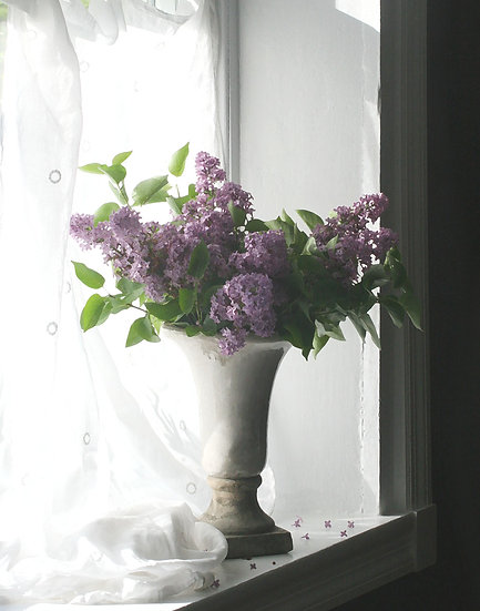 Lilacs On Windowsill- Portrait Orientation