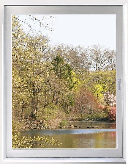 UW_Duke Gardens and Water- Portrait Orientation