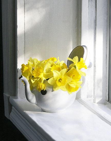 Daffodils in Antique Teapot- Portrait Orientation