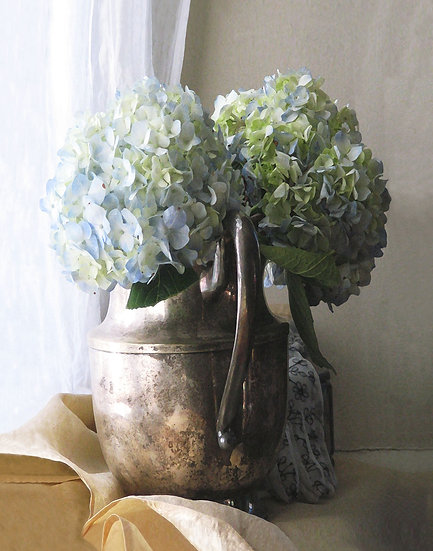 Hydrangea in the Silver Vase - Portrait Orientation