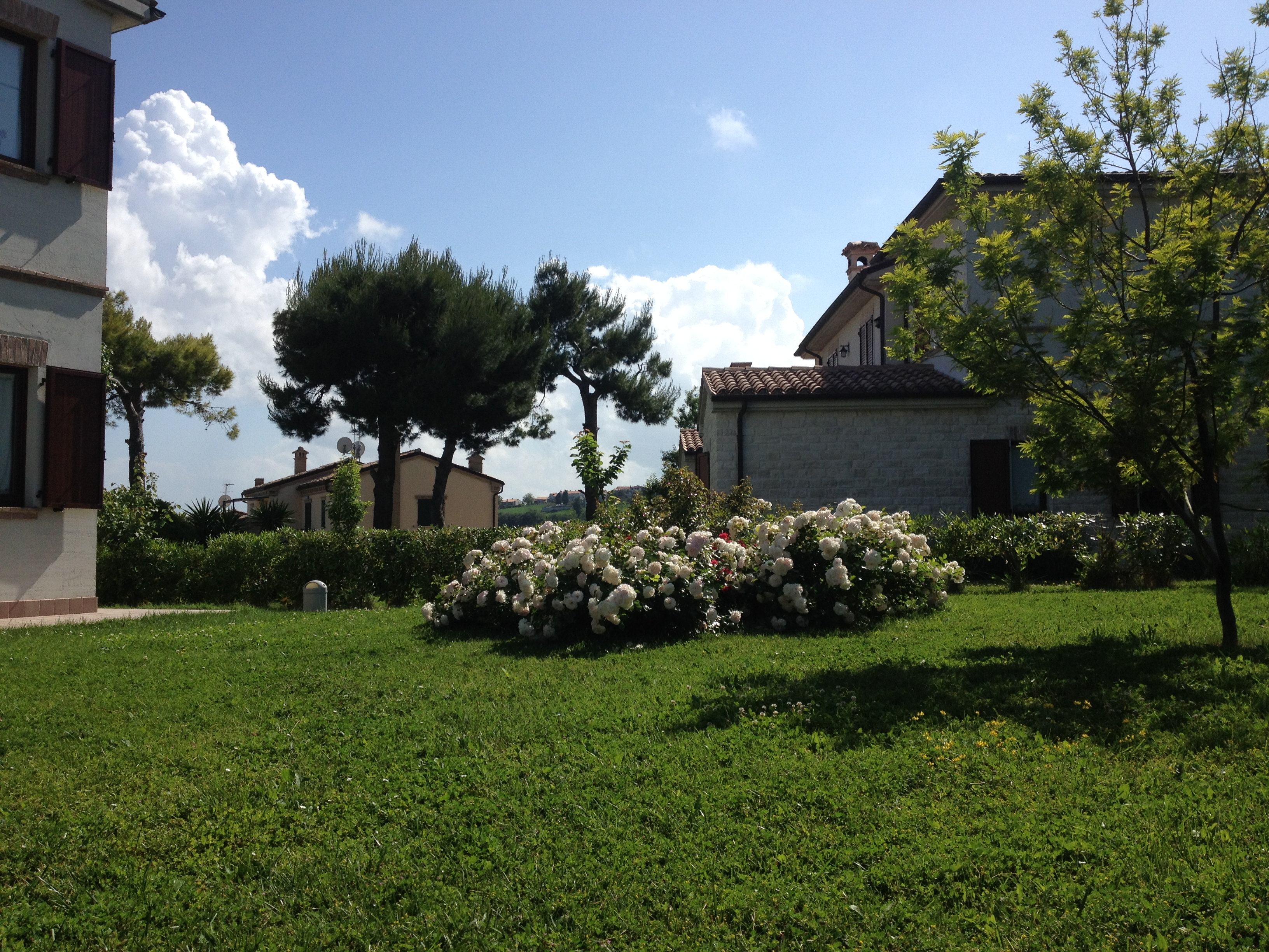 Vista giardino esterno