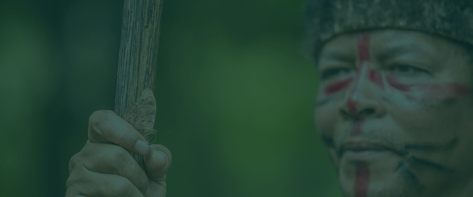 Festival Salve Vida Indígena