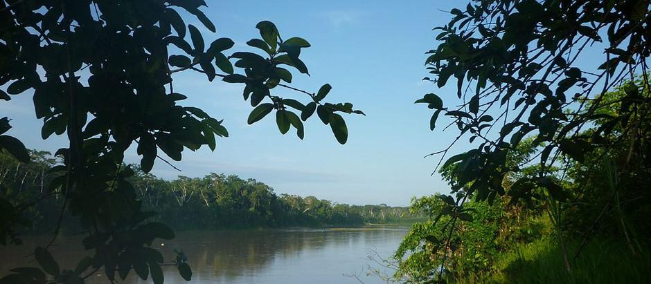 Antropóloga retrata cenário indígena no Médio Purus