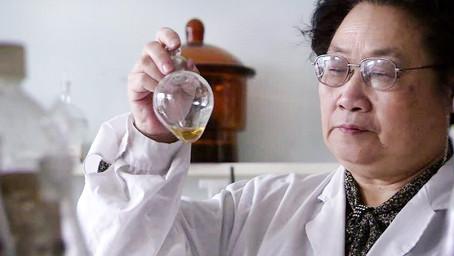 Descoberta de Nobel de Medicina pode auxiliar no combate à malária na Amazônia