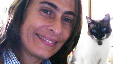 Exposição de Agis Variani é destaque na Casa Brasileira